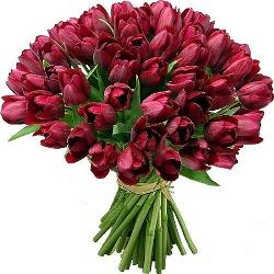 buket tyulpanov С Праздником 8 Марта, милые женщины!