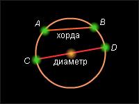 Окружность диаметр хорда